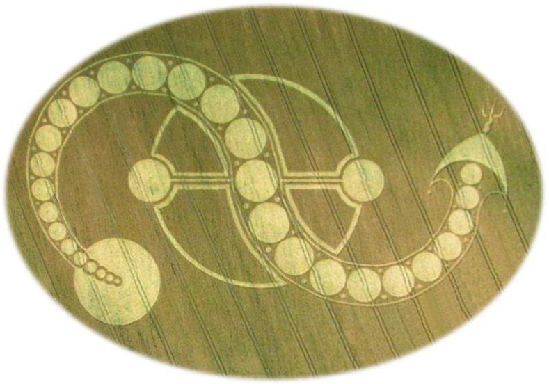 """Cosmic Serpent"" Crop Circle"